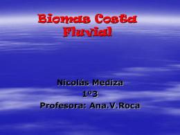 Biomas Costa Fluvial - Liceoweblog`s Weblog