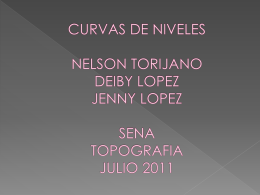 CURVAS DE NIVELES CURVAS DE NIVELES NELSON