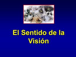 ¿Qué es un órgano sensorial?