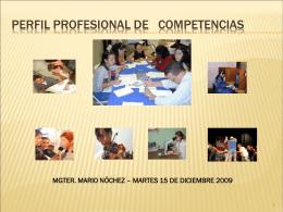 PERFIL DE COMPETENCIAS PROFESIONALES