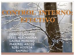 CONTROL INTERNO : EFECTIVO