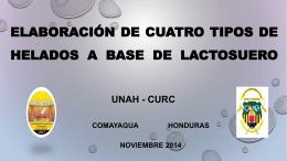 TESIS ELABORACIÓN DE CUATRO TIPOS DE HELADOS A