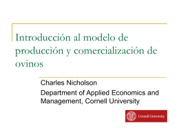 Technological Change and Markets in Sheep Systems