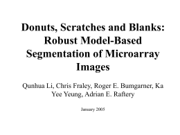 Donuts, Scratches and Blanks: Robust Model
