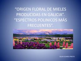 """ORIGEN FLORAL DE MIELES PRODUCIDAS EN GALICIA""""."""