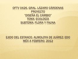 """OFTV 0426, Gral. Lázaro Cárdenas Proyecto """"Diseña"""