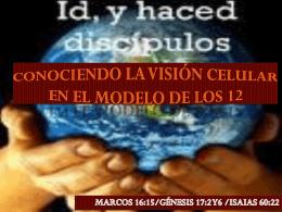 CONOCIENDO LA VISION CELULAR EN EL MODELO DE LOS