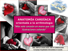 Anatomía arritmias