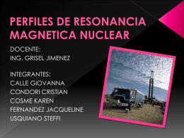 REGISTRO DE RESONANCIA MAGNETICA