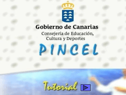 PINCEL Ventana guardar