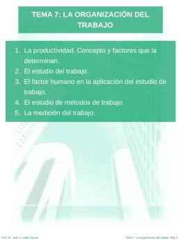 TEMA 7 LA ORGANIZACIÓN DEL TRABAJO