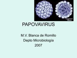 PAPOVAVIRUS - Avindustrias Guatemala
