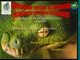 Diferencias entre la serpiente y la