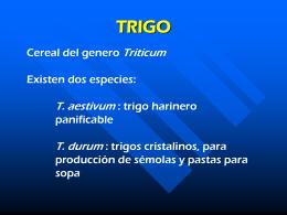 TRIGO - Páginas Web Educativas :: Inicio
