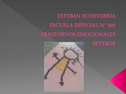 ESTEBAN ECHEVERRÍA ESCUELA ESPECIAL N° 503