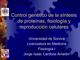 Control genético de la síntesis de proteínas,