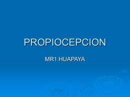 PROPIOCEPCION