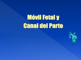Canal del Parto y Móvil Fetal