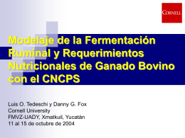 CNCPS: A Model for Evaluation of Requirements