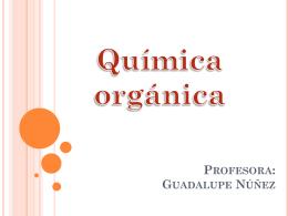 Profesora: Guadalupe Núñez