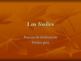 Los fósiles - I.E.S. HOCES DEL DURATÓN
