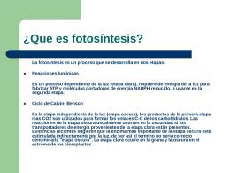 ¿Que es fotosíntesis?