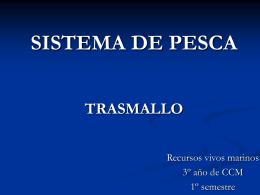 SISTEMA DE PESCA TRAMALLO