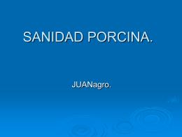 SANIDAD PORCINA. - JUANagro | Distribuciones
