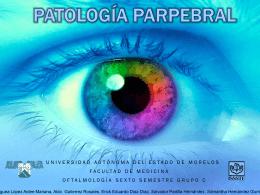 PATOLOGIA PARPEBRAL