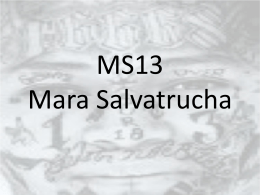 MS13 – Mara Salvatrucha