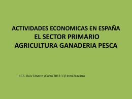 ACTIVIDADES ECONOMICAS EN ESPAÑA EL SECTOR