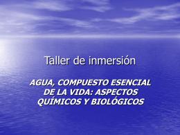 Taller de inmersión