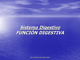 Aparato digestivo - BIOLOGIA | Just another