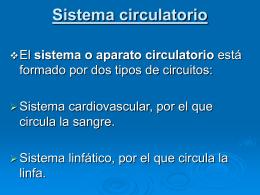 Sistema circulatorio - Salud | Este es un aporte
