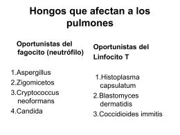 Incidencia de neumonía por hongos en poblaciones