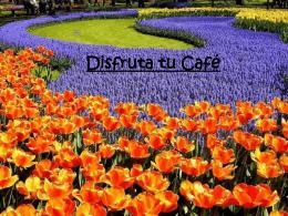 """Descargar """" DISFRUTA TU CAFE"""""""