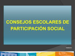 Consejos de Participación Social