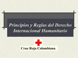 Principios y Reglas del Derecho Internacional