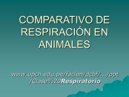 RESPIRACION EN ANIMALES