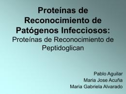 Proteínas de Reconocimiento de Peptidoglican: Las