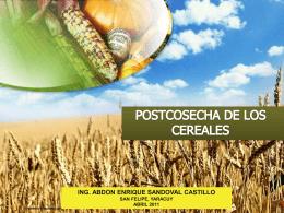 POSTCOSECHA DE LOS CEREALES