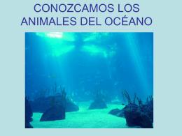 LOS ANIMALES DEL OCÉANO