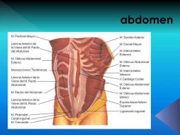 abdomen - Fisioterapia