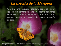 La Mariposa - Mentes Unidas por la Luz