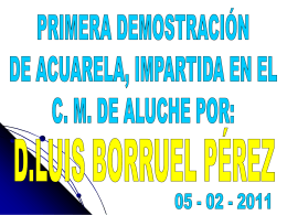 Demo_Borruel_2011