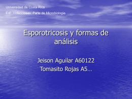 Esporotricosis y formas de análisis