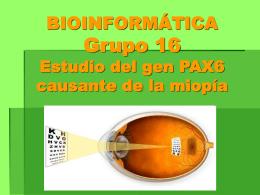 BIOINFORMÁTICA Grupo 16 Estudio del gen PAX6