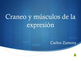 Craneo y músculos de la expresión
