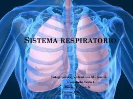 Sistema respiratorio - Blog de la profesora Silvia
