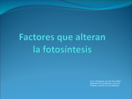 Factores que alteran la fotosíntesis